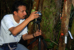 Angel Raygada photographing copal resin lumps at Jenaro Herrera - Photo by Campbell Plowden/CACE