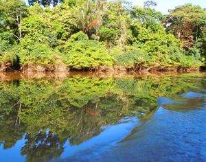 Ampiyacu River near Pebas, Peru.  Photo by Campbell Plowden/CACE