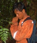 Bora man Brito smelling bark chip to identify tree. Photo by Campbell Plowden/Center for Amazon Community Ecology