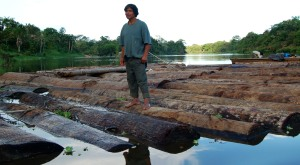 Bora man on log at Brillo Nuevo. Photo by Campbell Plowden/CACE