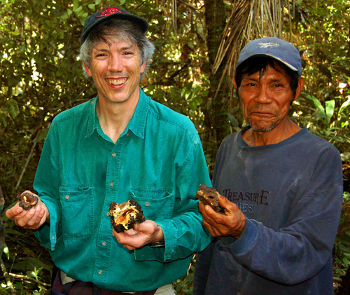 Campbell Plowden and Eli Soria with aguajal copal at Brillo Nuevo.  Photo by Angel Raygada/Center for Amazon Community Ecology