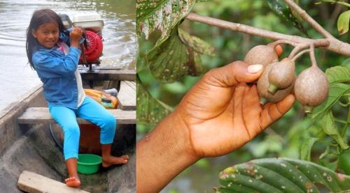 Bora girl Mari steering peque-peque and huitillo fruits on Yaguasyacu River