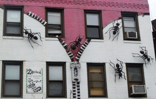 Giant ants in South Street