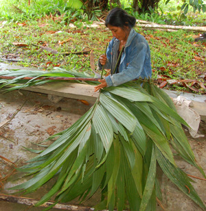 Brigita weaving irapay leaves. Photo by C. Plowden/CACE