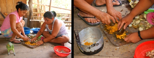 Chino artisans preparing guisador root dye. Photos by C. Plowden/CACE