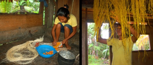 Pamela grating guisador and hanging dyed chambira fibers. Photos by C. Plowden/CACE