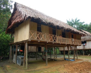 Raised house in Nueva Esperanza. Photo by C. Plowden/CACE