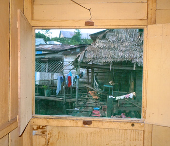 View through screen window from Pebas hotel.  Photo by C. Plowden/CACE