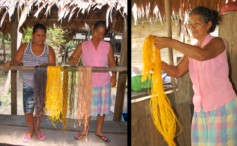 Washing and drying guisador dyed chambira at Chino. Photos by C. Plowden/CACE
