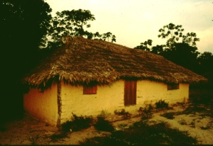 Plowden family house in Tekohaw 1997-1999. ©Photo by Campbell Plowden/Center for Amazon Community Ecology