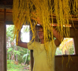 Ocaina native artisan Pamela hanging yellow dyed chambira palm fiber in Nueva Esperanza, Peru. Photo by Campbell Plowden/Center for Amazon Community Ecology