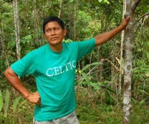 Juan Silvano with young rosewood tree at Tamshiyacu. © Photo by Campbell Plowden/Center for Amazon Community Ecology