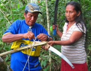 Bora artisans attaching pruning saw to pole to harvest chambira palm leaves. ©Photo by Campbell Plowden/Center for Amazon Community Ecology