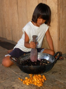 Bora artisan daughter mashing mishquipanga. Photo by Campbell Plowden/Center for Amazon Community Ecology