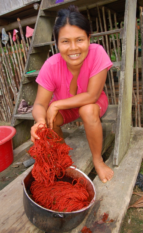 Casilda Vasquez and sisa dyed chambira. Photo by Campbell Plowden/Center for Amazon Community Ecology