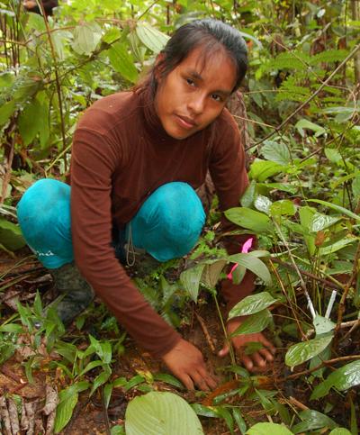 Kori Vasquez planting chambira. Photo by Campbell Plowden/Center for Amazon Community Ecology