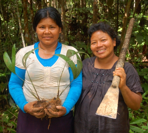 Lucila Flores and Ines Chichaco at chambira planting. Photo by Campbell Plowden/Center for Amazon Community Ecology