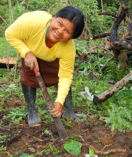Lucila Flores digging hole with machete. Photo by Campbell Plowden/Center for Amazon Community Ecology