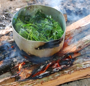 Cooking chambira with pijuayo leaves. Photo by Campbell Plowden/Center for Amazon Community Ecology