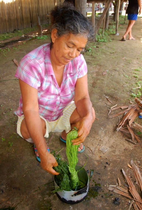 Romelia Huanaquiri soaking chambira with pijuayo. Photo by Campbell Plowden/Center for Amazon Community Ecology