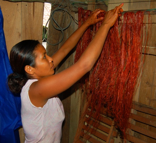 Bora artisan hanging chambira fibers dyed with sisa (Arribidaeae spp.)(2). Photo by Campbell Plowden/Center for Amazon Community Ecology