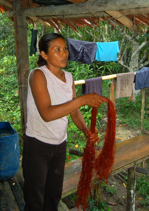 Bora artisan hanging chambira fibers dyed with sisa (Arribidaeae spp.). Photo by Campbell Plowden/Center for Amazon Community Ecology