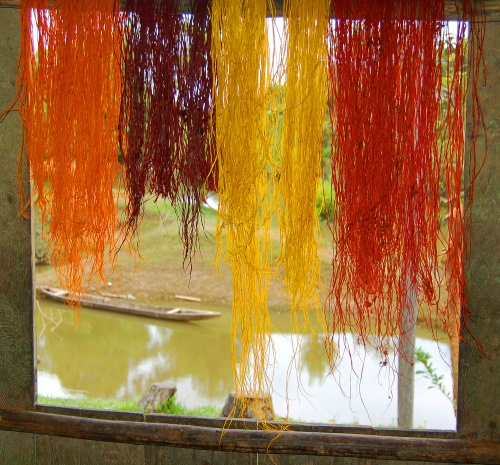 Chambira dyed with achiote, sisa (Arrabidaea spp.) and guisador.  Photo by Campbell Plowden/Center for Amazon Community Ecology