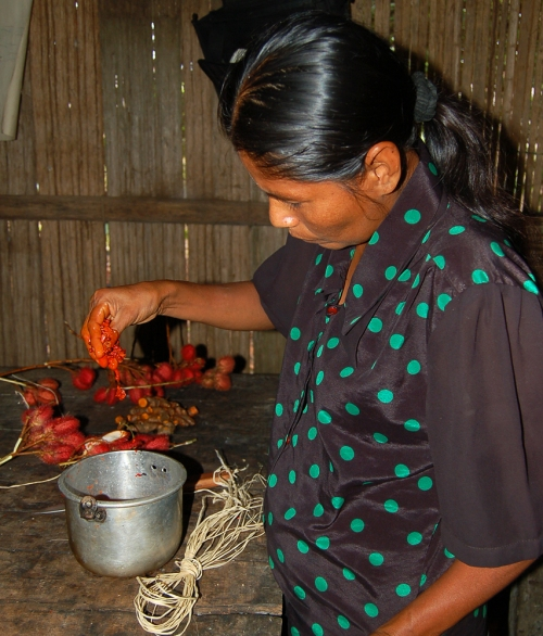 Artisan soaking chambira fiber with achiote seed oil. © Photo by Campbell Plowden/Center for Amazon Community Ecology