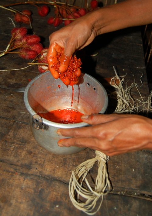 Artisan preparing to dye chambira fiber with achiote seed oil. © Photo by Campbell Plowden/Center for Amazon Community Ecology
