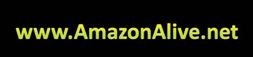 www.AmazonAlive.net