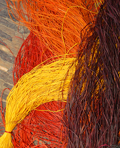 Chambira fiber dyed with guisador root and other plants drying at Chino. Photo by Campbell Plowden/Center for Amazon Community Ecology