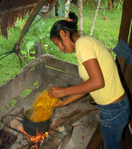 Ocaina artisan from Nueva Esperanza cooking chambira fiber with grated guisador root. Photo by Campbell Plowden/Center for Amazon Community Ecology