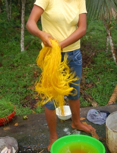 Ocaina artisan from Nueva Esperanza washing and draining chambira fiber dyed with guisador root. Photo by Campbell Plowden/Center for Amazon Community Ecology