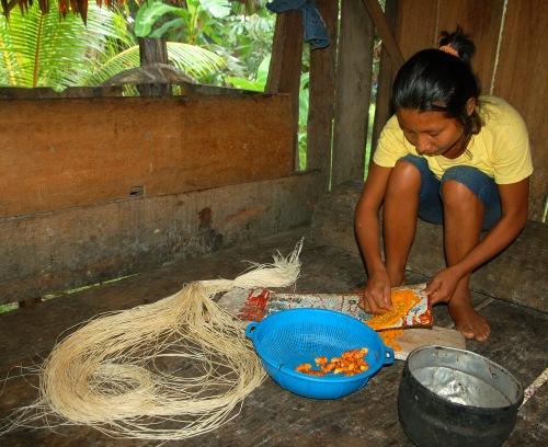 Ocaina artisan from Nueva Esperanza grating guisador root. Photo by Campbell Plowden/Center for Amazon Community Ecology