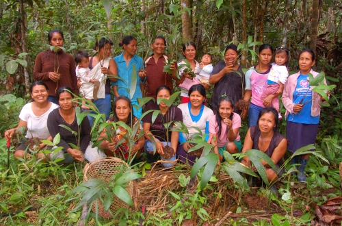 Chambira planting group of artisans