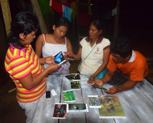 Dora and family examining insect photos to make ornaments. Photo by Campbell Plowden/Center for Amazon Community Ecology.